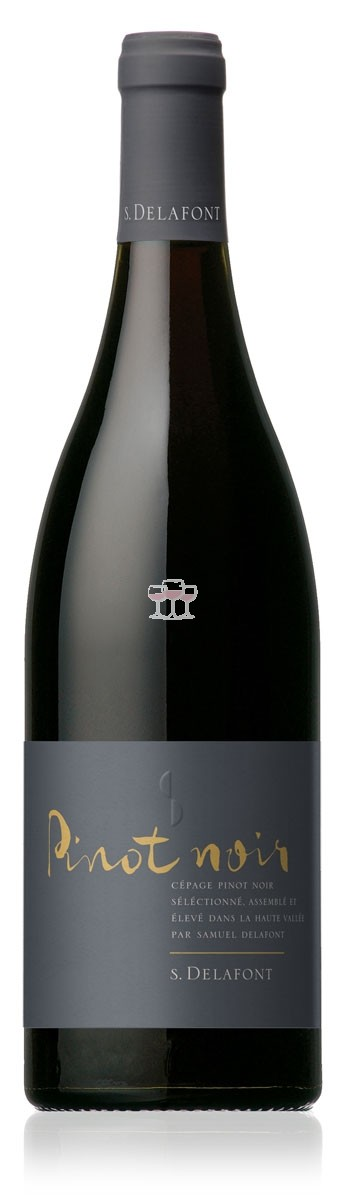 Pinot noir IGP Haute Vallée de L'aude