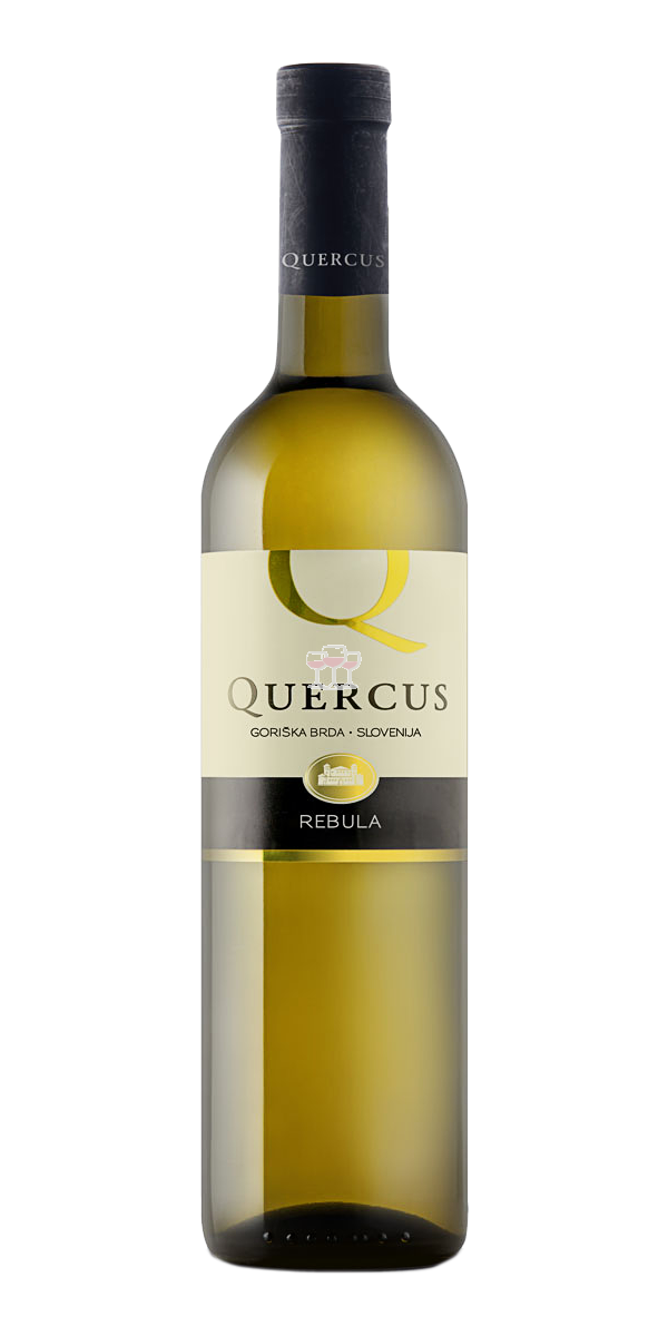 Vinska Klet Goriška Brda Quercus Rebula Weißwein Slowenien trocken