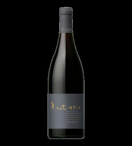 Samuiel Delafont Pinot noir IGP Haute Vallée de L'aude Rotwein Frankreich trocken