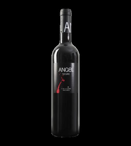 Bodegas Angel Negre Rotwein Spanien trocken