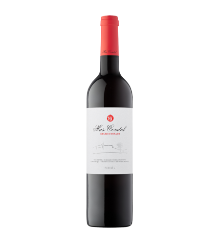 Mas Comtal Tinto Rotwein Spanien trocken
