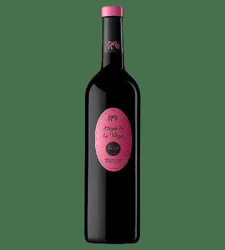 Bodegas Valle de Monzón Hoyo de la Vega Rosado Rose Spanien trocken