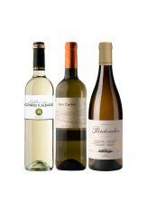 Lernen Sie die neuen Weißwein Jahrgänge kennen. Im Paket je 1Fl.  Condes de Albarei Albariño 2020, Gran Cardiel Verdejo 2020, Pardevalles Albarin 2020. Verfsandkostenfrei