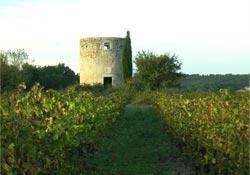 Bourdic-Rhônetal