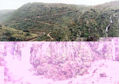 Ribera de Pelazas Gran Abadengo